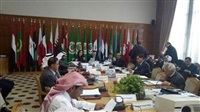25th meeting of Arab