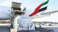 UAE sends aid to
